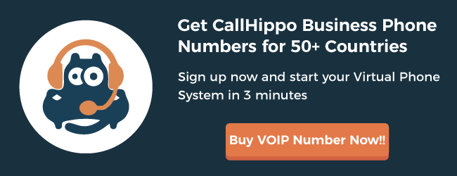 Virtual Phone System - CallHippo