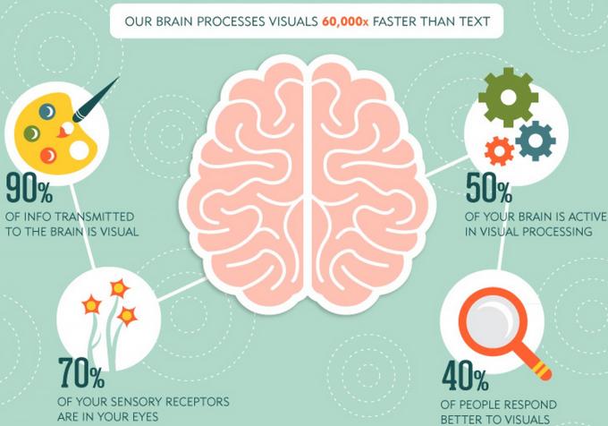 Brain Process Visuals