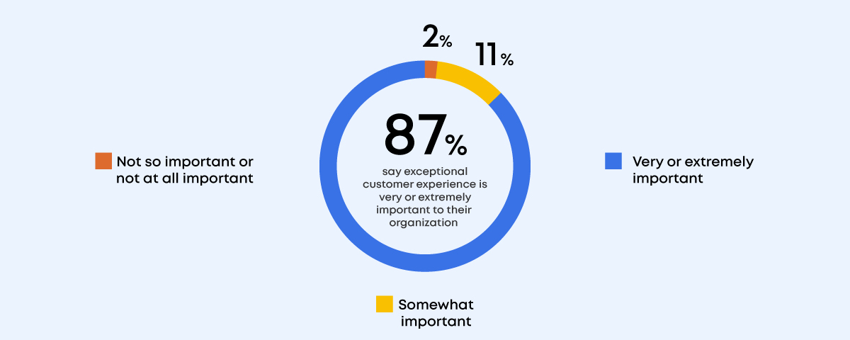 Pie chart showing customer experience
